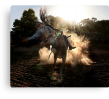 Dust Buster Canvas Print