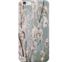 The Flower That Blooms In Adversity Is The Rarest And Most Beautiful Of All iPhone Case/Skin