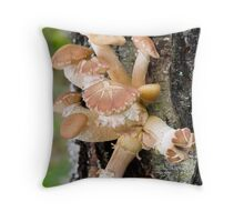 mushrooms (Armillaria gallica) Throw Pillow