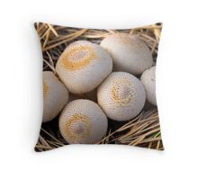 group of mushrooms (Lycoperdon umbrinum). Throw Pillow