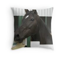 Abbie in a stable Throw Pillow