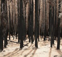 Forest After the Fire by Gerijuliaj