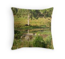 Reflections in the Lagoon Throw Pillow