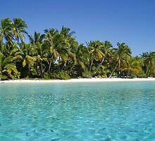 Lagoon paradise by loufallon
