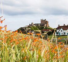 Bamburgh Castle, Northumberland by afh1066