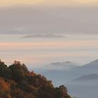 Sun-Kissed Mountain Mists Of October Dawn by Jean Gregory  Evans