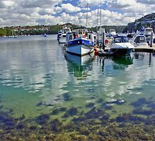 Middle Harbour  by Peter Greenhalgh