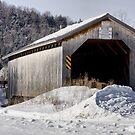Lattice Bridge by Deborah  Benoit