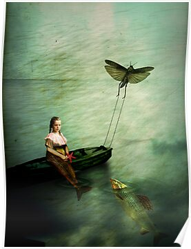 The starfish by Catrin Welz-Stein