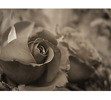 First Love... Photographic Print