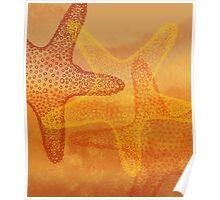 Three starfish v2 Poster