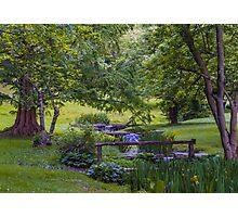 Garden Valley Photographic Print