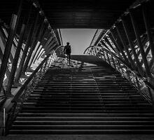Passerelle Léopold-Sédar-Senghor Bridge Steps by mlphoto