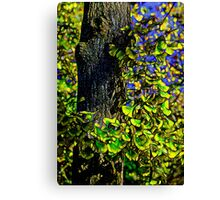 Ginkgo Canvas Print