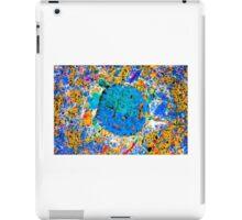 Toddler Turtle Blue iPad Case/Skin