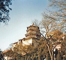 Beijng, The Summer Palace  by presbi