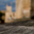La Seu - Palma de Mallorcas 12th Century Cathedral #2 by Philip  Rogan