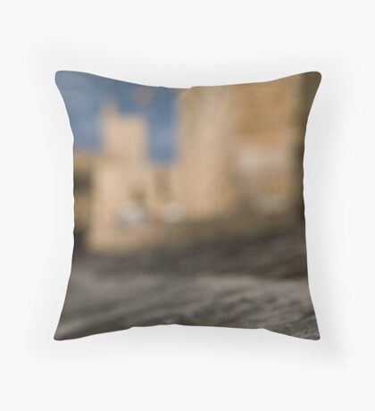 La Seu - Palma de Mallorcas 12th Century Cathedral #2 Throw Pillow