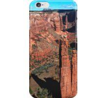 The Fraser Spider iPhone Case/Skin