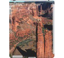 The Fraser Spider iPad Case/Skin