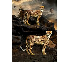 To Hunt in Pairs Photographic Print