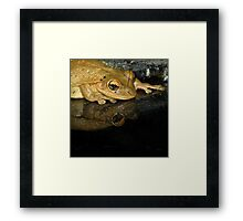 Mirror, Mirror, Who Is The Most Beautiful Princess ??? Framed Print