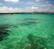 Peaceful Reef by Wendy Skinner