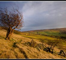 Storm brewing over Wycoller  by Shaun Whiteman