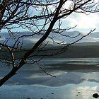 Loch Morlich by lins