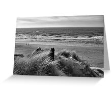 On Top of A Dune Greeting Card