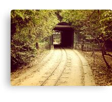 Tunnel & track Canvas Print