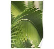 The Green Light #2 Poster
