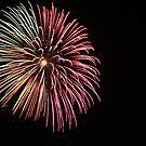 Multicolor Firework by IreKire