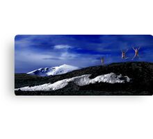 A tribute to the spirit of nature Canvas Print