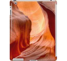 The Smooth Slide iPad Case/Skin