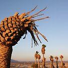 Pineapple Palm Tree by IreKire