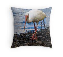 Florida Bird Throw Pillow
