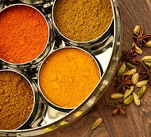 Colourful Orange Yellow Kitchen Chef Silver Indian Spices Pots by HotHibiscus