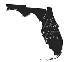I Like it Here Florida by surgedesigns