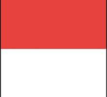 Flag of Solothurn Canton by abbeyz71