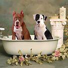 Bath time buddies by Lover1969