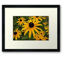 Green insect on leaf of yellow flower Framed Print