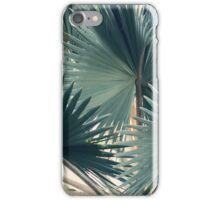 Bismarck #3 iPhone Case/Skin