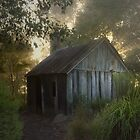 The slab hut . . . by Rosalie Dale