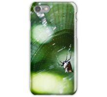 A Spider's Web iPhone Case/Skin