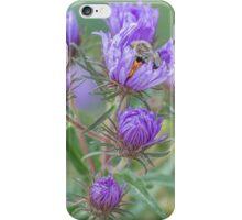 Sleeping In My Asters iPhone Case/Skin