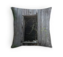 Mattress Spring Window Throw Pillow