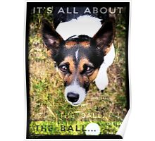 Terrier Obsession: It's All About The Ball Poster