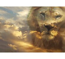 The Lion of the tribe of Judah has prevailed! Photographic Print