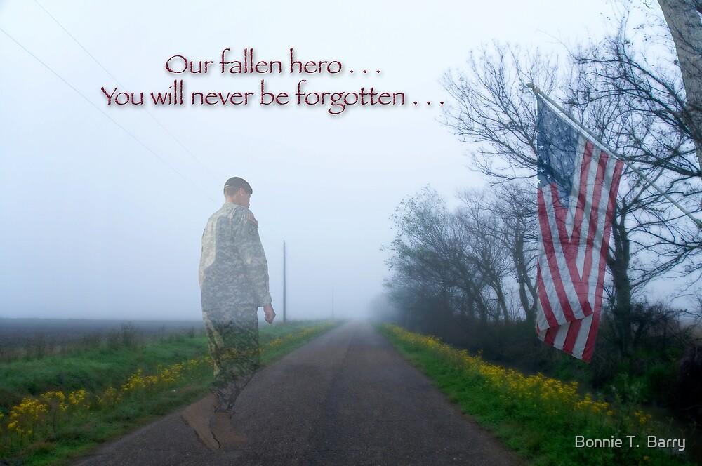 Fallen Hero by Bonnie T.  Barry